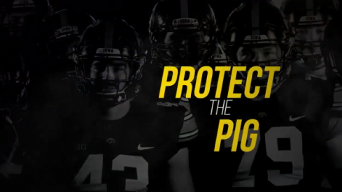 PROTECT THE PIG