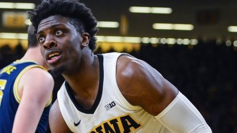 tyler cook cannot believe these picks are free